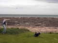 Arbroath-(fetch-along-North-Sea)
